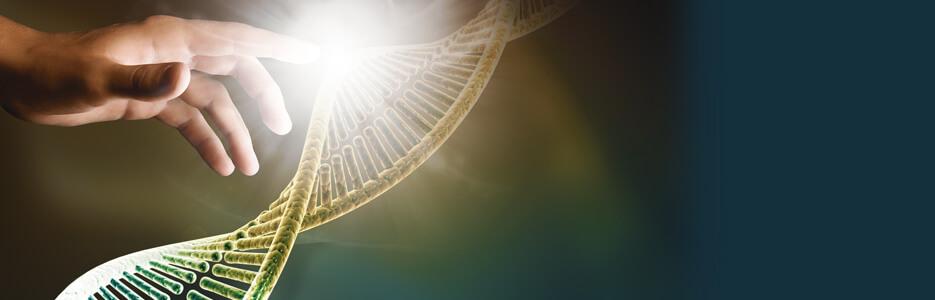 Os milagres registrados nos evangelhos combinam curas orgânicas e existenciais. Foto: Fotolia