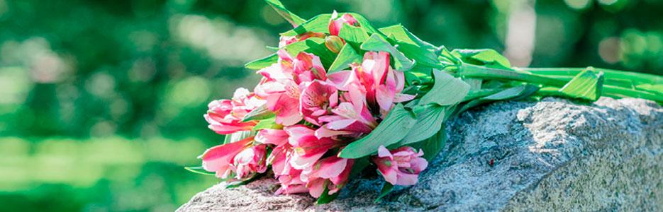 artigo-Adeus-morte-edição-Semana-de-Oração-2015-slider